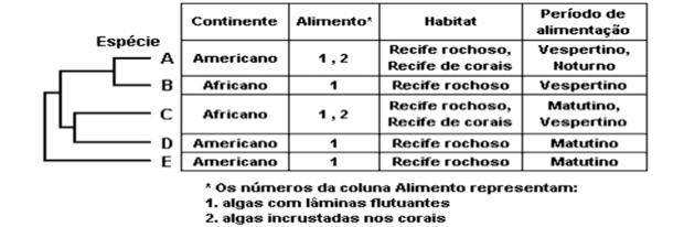 Tabela (Foto: Reprodução/UFF)