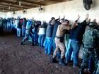 Operação para desativar rinha de galo prende 40 pessoas em Arapongas