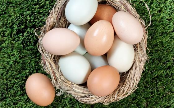 A cor da casca dos ovos depende unicamente das características genéticas da ave (Foto: é Thinkstock / Getty Images)