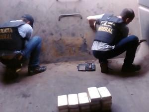 Ao todo, foram apreendidos 101 quilos de cocaína (Foto: Divulgação/ PF)