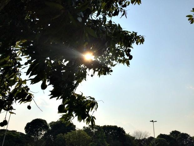 Apesar de previsão de chuva, Campo Grande teve céu limpo e calor (Foto: Isabela Cavalcante/G1 MS)