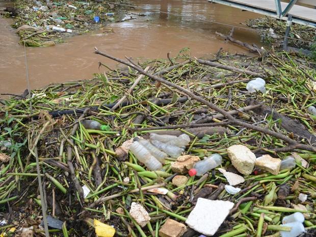 Lixo acumulado após cheia do Rio Piracicaba (Foto: Carol Giantomaso/G1)