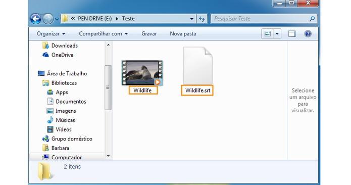 Adicione os arquivos no pendrive com o mesmo nome de vídeo e legenda (Foto: Reprodução/Barbara Mannara)