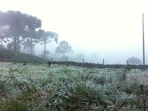 Serra amanheceu novamente com temperaturas negativas (Foto: Larissa Vier/RBS TV)