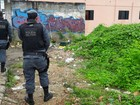 No AM, 4 suspeitos de esquartejar corpo achado em malas são presos