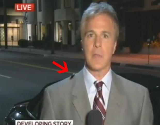 Inseto apareceu durante transmissão e passeou pelo corpo do repórter (Foto: Reprodução)