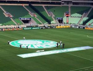 Arena Palmeiras - escudo campo (Foto: Marcelo Hazan)