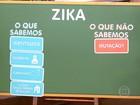 Especialistas falam sobre o vírus da zika e microcefalia no Bem Estar