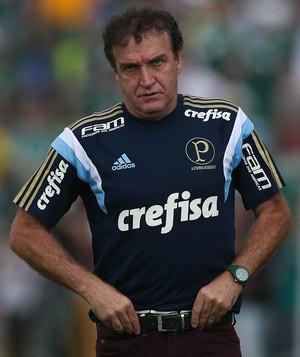 Palmeiras prioriza preparação física para dar arrancada final no Brasileirão 93335ccc24428