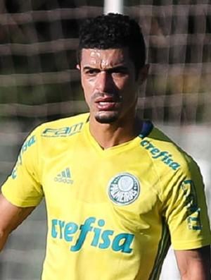 Egídio Palmeiras (Foto: Fabio Menotti/Ag Palmeiras)