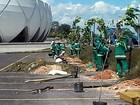 Mudas são plantadas no entorno da Arena da Amazônia para Rio 2016