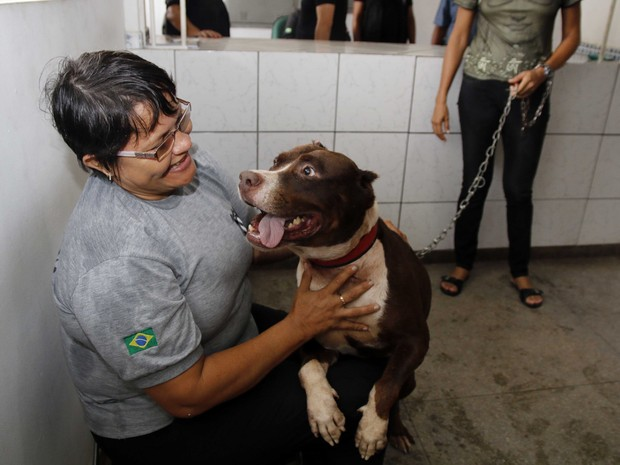 'Conan' chegou ao presídio em 2012. Cão pitbull é treinado por policiais militares.  (Foto: Divulgação/ Susipe)