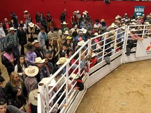 Arena lotada no Rodeio de Americana (Foto: Pedro Amatuzzi-Fotografia)