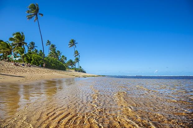 Vista do mar e dos  coqueiros que acompanham  toda a extensão da praia. (Foto: Gonzalo Azumendi/Getty Images)