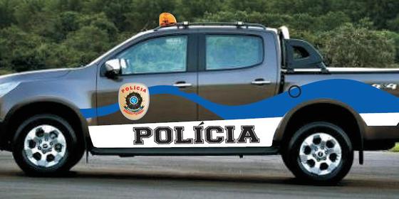 Viatura da polícia do Senado Federal (Foto: Reprodução)