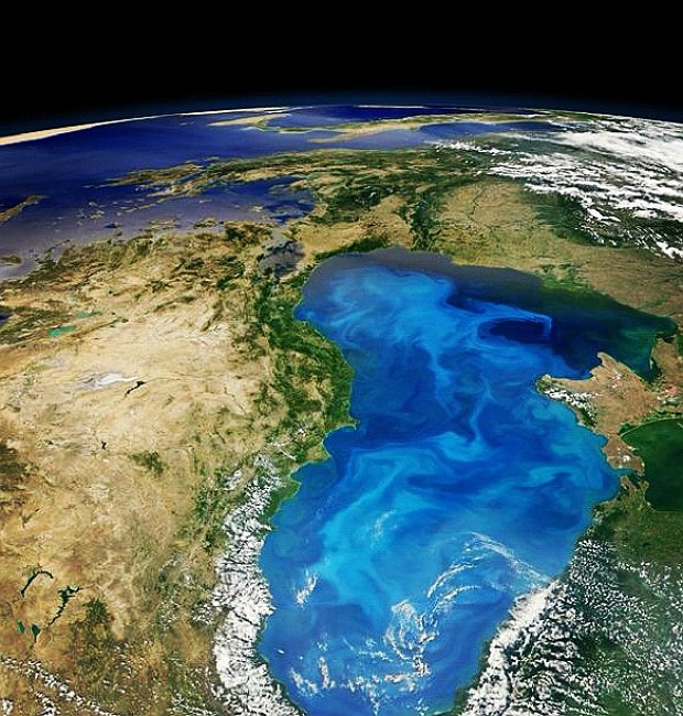 Fitoplâncton Nasa (Foto: Nasa/GSFC/Modis)