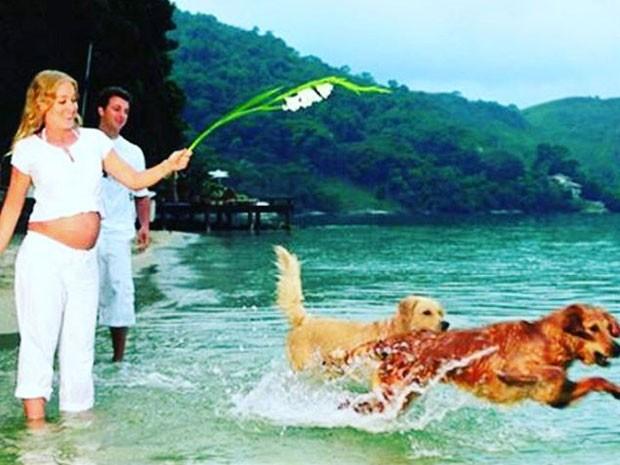 Angélica e Luciano Huck com os cachorros Lucki e Lola (Foto: Instagram/ Reprodução)