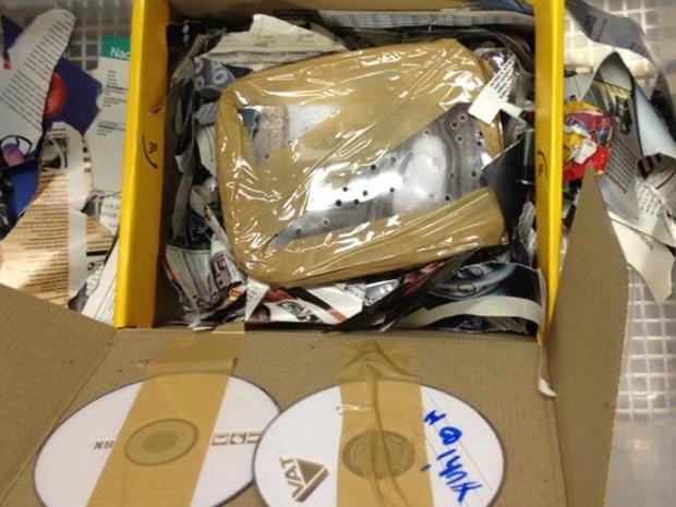Cobra estava em pacote do Sedex (Foto: Ibama/Divulgação)