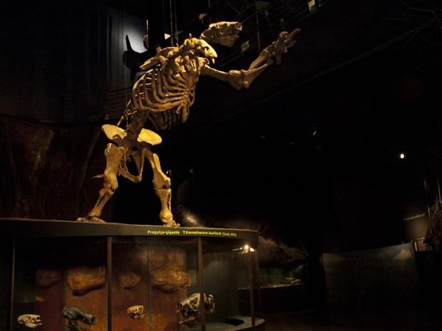 Preguiça gigante é uma das peças que foi afetada no acervo.  (Foto: Arquivo/PUC Minas)