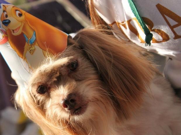 Convidados recebem convite impresso para comparecerem à festa de aniversário canina (Foto: Arquivo Pessoal)