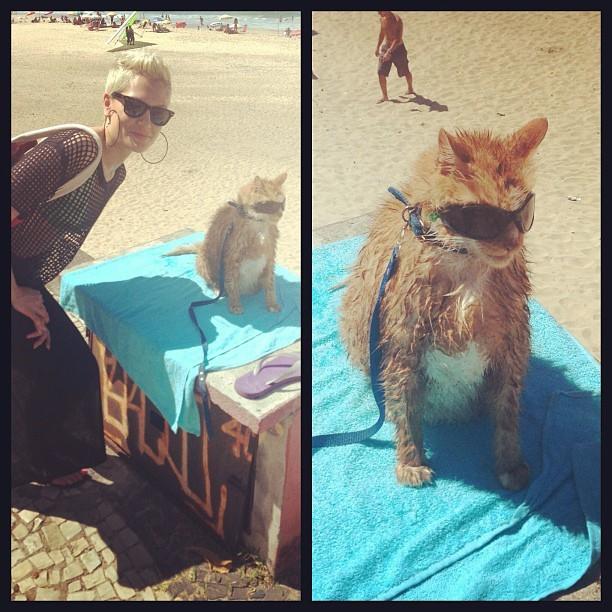 Jessie J tirou foto com um gato (Foto: Instagram/ Reprodução)