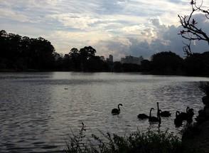 Ibirapuera; Parque do Ibirapuera; (Foto: Época NEGÓCIOS)