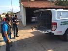 Preso suspeito de chacina que matou quatro pessoas no Norte do Piauí
