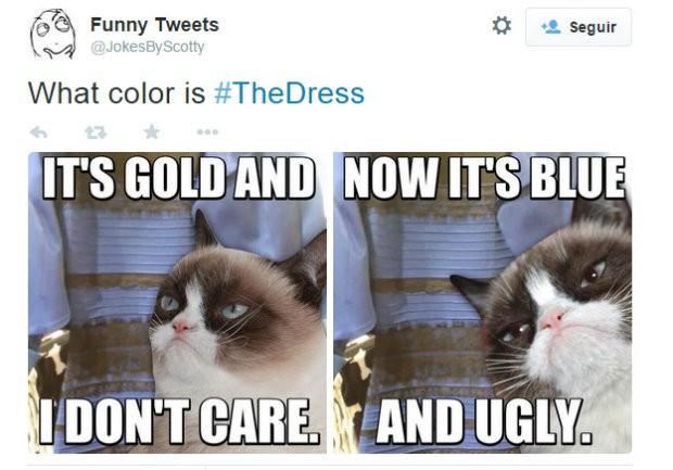 meme vestido 8 (Foto: Reprodução/Twitter)