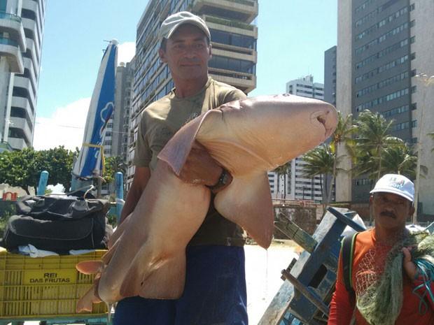 Muitos banhistas saíram do mar assustados quando os pescadores chegaram com o animal (Foto: Reinaldo Andrade / WhatsApp)