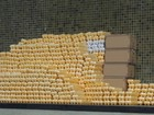 Instituto de Agropecuária apreende 228 mil ovos irregulares no ES