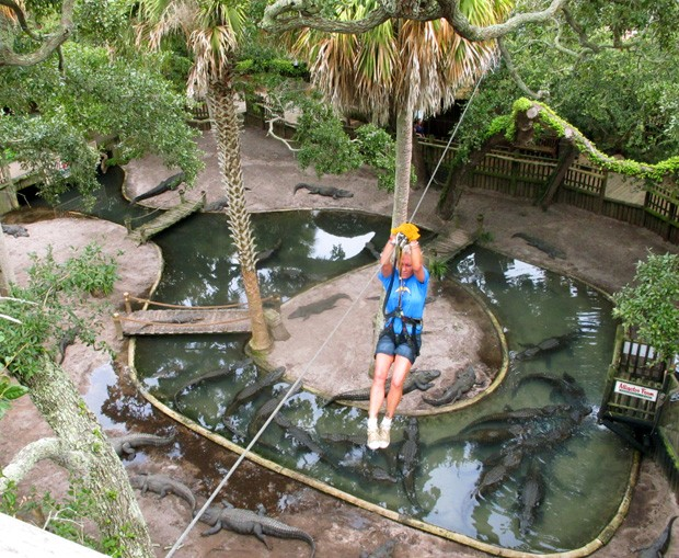 Ava Martin desliza por cima de dezenas de jacarés em zoológico na Flórida (Foto: Brendan Farrington/AP)