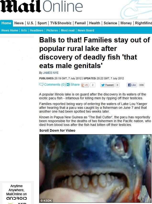 Exemplares de pacu invadiram lago dos EUA e aterrorizam famílias. Peixe ataca testículos de homens. (Foto: Reprodução/Daily Mail)