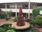 Shoppings de Campinas buscam 4.580 temporários para vagas no Natal
