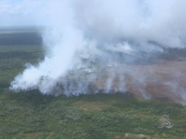 Incêndio destroi vegetação de campos e florestas de várzea no Amapá (Foto: Reprodução/TV Amapá)