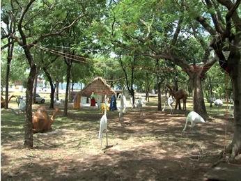 Presépio conta com animais como onça, garça e tuiuiú (Foto: Reprodução/TVCA)