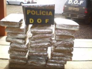 Droga estava escondida em bagageira de ônibus (Foto: Divulgação/DOF)