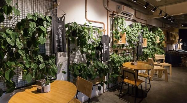 cafés (Foto: reprodução/instagram)