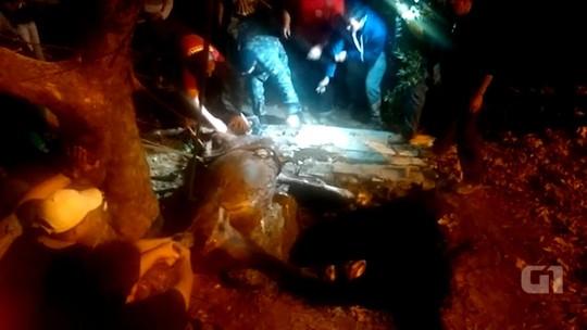 Cavalo cai em bueiro e é resgatado após quatro horas em Santana do Livramento; veja vídeo
