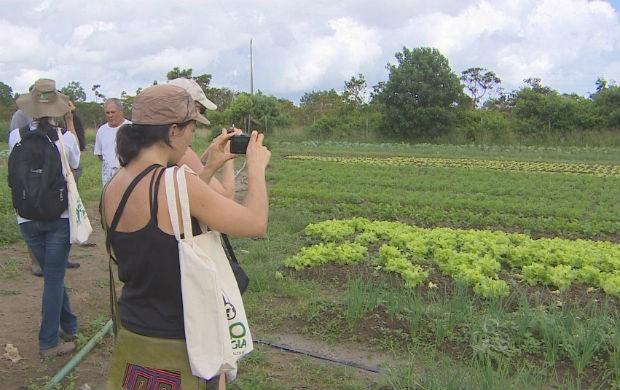 Agricultores do Acre e da Guiana Francesa (Foto: Reprodução/TV Amapá)