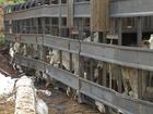 Vacas são resgatadas após caminhão tombar na Serra da Petrovina em MT