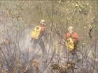 Bombeiros combatem há quase dois meses fogo na Chapada Diamantina