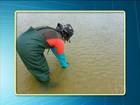 Resultado preliminar diz que praias de Santarém estão com menos resíduos