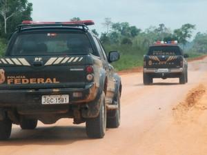 Polícia Federal do Acre apreensão de drogas (Foto: Diulgação PF)