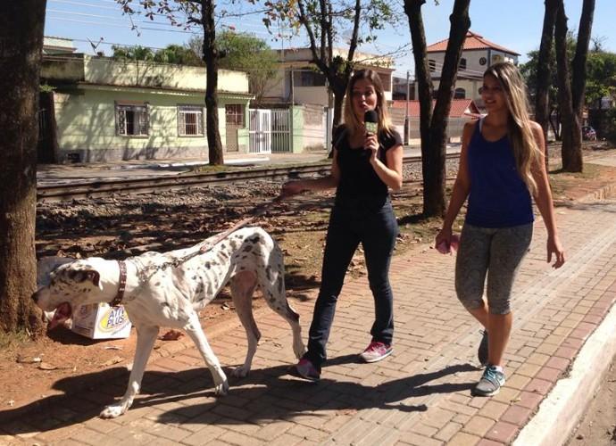 Diana Sabadini conheceu de perto uma cadela da raça Dogue Alemão (Foto: Plugue)