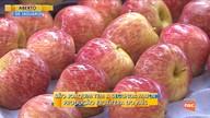 São Joaquim tem a segunda maior produção frutífera do país