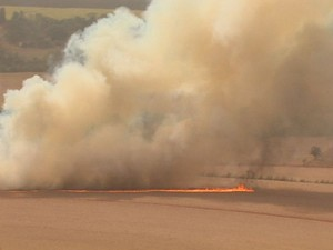 Trecho em chamas em Orlândia (Foto: Maurício Glauco/EPTV)