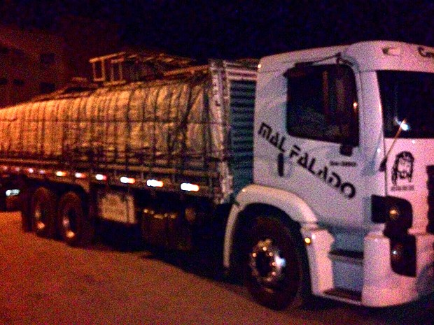 Carga e condutor foram encaminhados ao Ibama, em Balsas (MA) (Foto: Divulgação / PRF-MA)