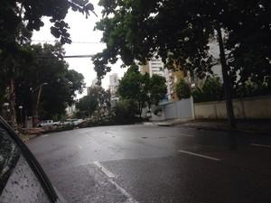 Queda de árvore na Rua Alberto Paiva Recife (Foto: G1)