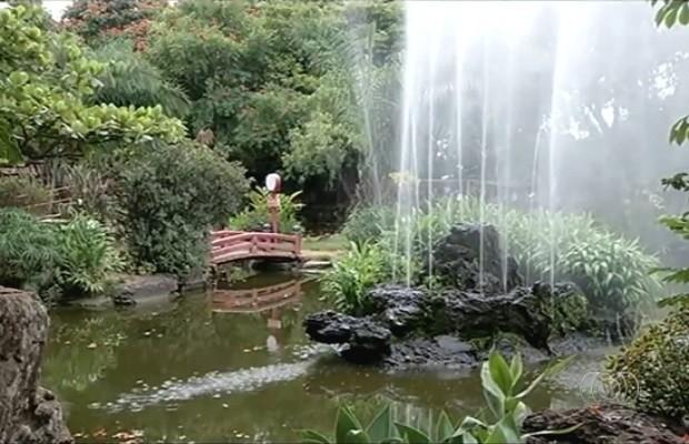 imagens jardim japones : imagens jardim japones:Jardim japonês atrai turistas em busca de paz em Caldas Novas Goiás