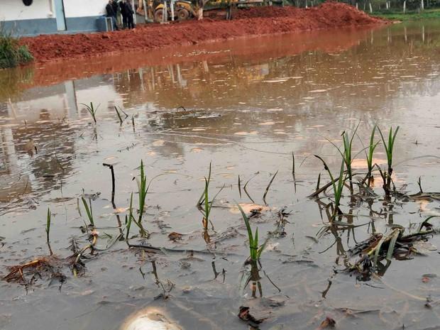 Área em Itaquaquecetuba foi embargada pela Prefeitura (Foto: Osvaldo Birke/ Prefeitura de Itaquaquecetuba)